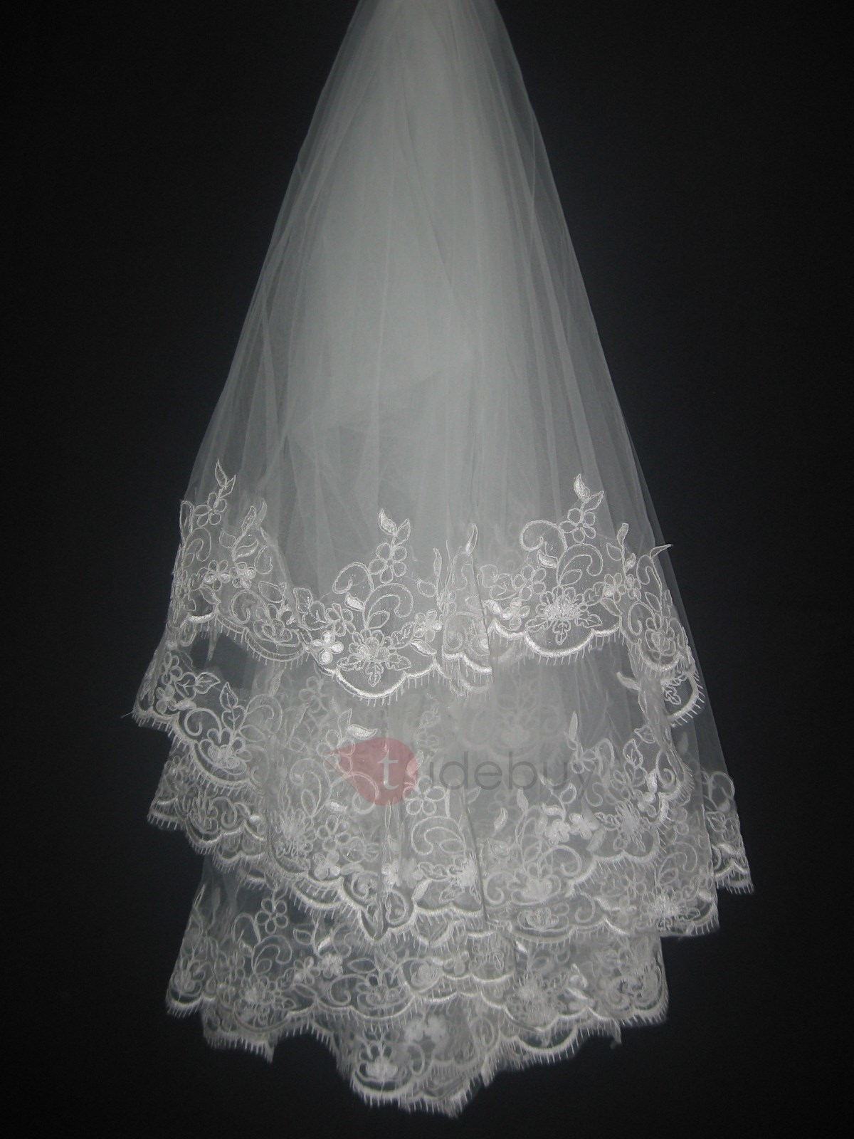 Gorgeous Wedding Bridal Veil with Appliques Edge