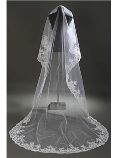 Stylish Cathedral Length Wedding Veil with Appliques