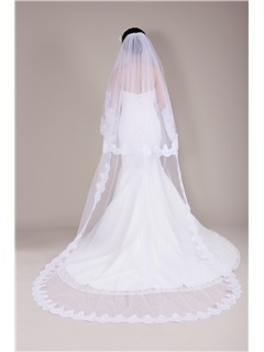 Stunning Cathedral Train Lace Trim Long Wedding Veil, Bridal Veil