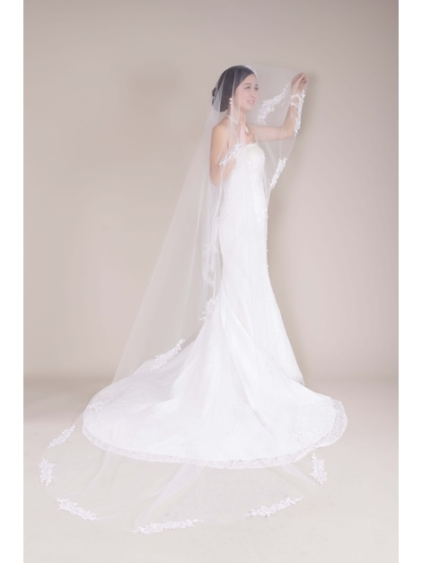 Remarkable Cathedral Tull Applique Wedding Bridal Vei