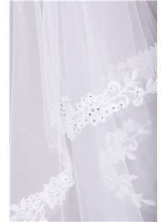 Remarkable Cathedral Tull Applique Wedding Bridal Veil with Crystal