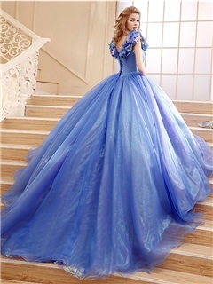 Straps Ball Gown Pick-ups Appliques Quinceanera Dress 14