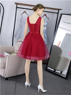 Fancy A-Line Scoop Appliques Sashes Short Homecoming Dress