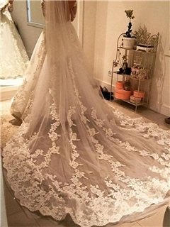 Stunning Appliques Cathedral Tulle Bridal Veil