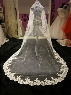 Amazing Appliques Edge Chapel Wedding Veil
