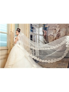 Attracitve Cathedral Length White Tulle Wedding Veil