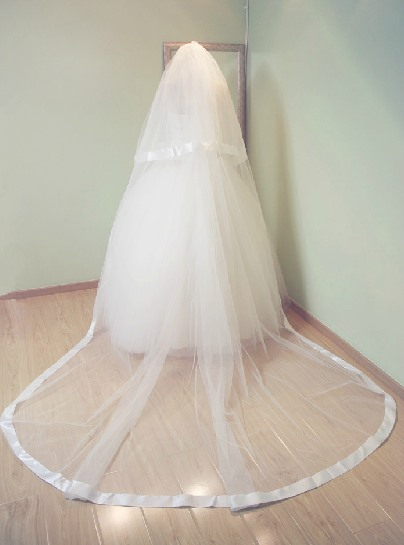 Simple Cathedral Length Tull Wedding Veil