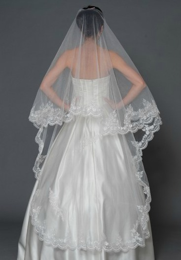 Cathedral Length White Appliques Edge Wedding Veil