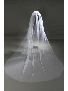 Consice Cathedral Length Tull Wedding Veil