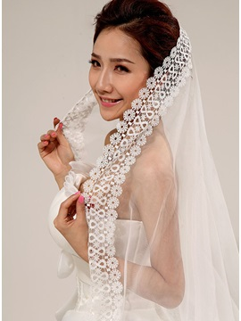 Luxurious Nice Lace Wedding Veil
