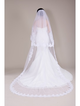 Stunning Cathedral Train Lace Trim Long Wedding Veil Bridal Veil