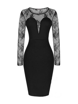 Black Lace Floral Print Bodycon Dress