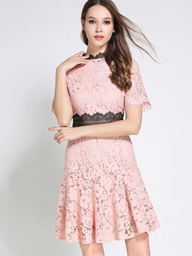 Chic Multi Colored Short Sleeve Lace Dress