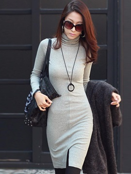 Turtleneck Long Sleeve Plain Womens Bodycon Dress