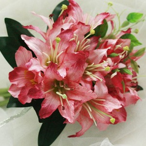 10 Pieces Light Red Silk Cloth Lily Wedding Bridal Bouquet