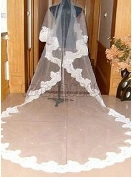 Popular Cathedral Length Tulle Appliques Edge Wedding Veil