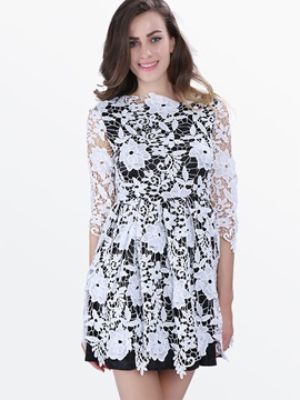 Nine Points Sleeve Zipper A-Line Lace Dress