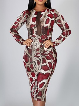 Long Sleeve Round Neck Print Serpentine Winter Women's Dress