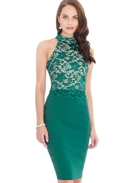Slim Multi-colored Sleeveless Lace Bodycon Dress