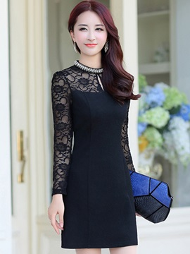 Chic Lace Sleeve Slim Day Dress