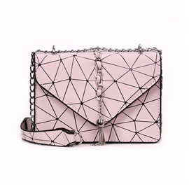 Brief Korean Style Tassel Crossbody Bag