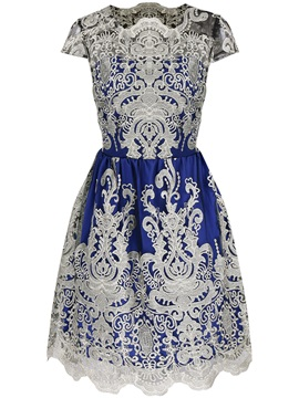 Vintage Embroidery Mesh Patchwork Women's Skater Dress
