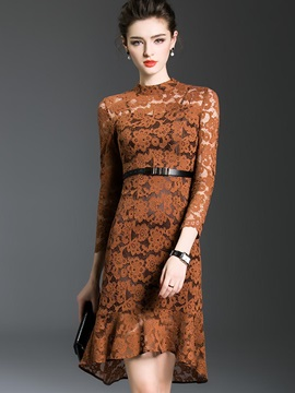 Long Sleeve Round Neck Lace Dress