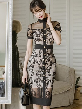 Amazing Short Sleeve Lace Bodycon Dress