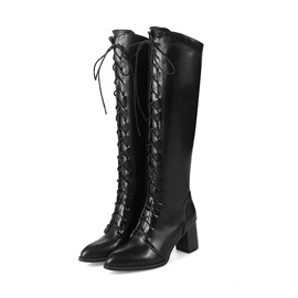 Side Zipper Pointed Toe Chunky Heel Lace-Up Boots