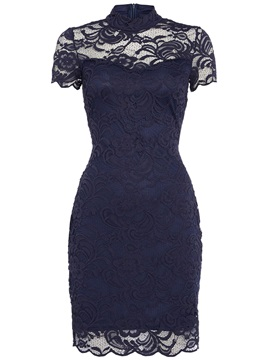 Stand Collar See-Through Short Sleeve Women's Bodycon Lace Dress