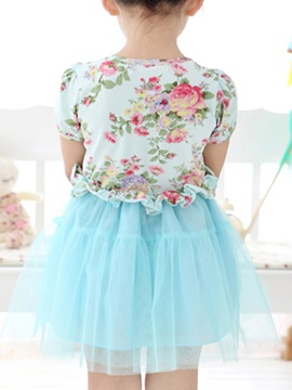 Ball Gown Cotton Mesh Princess Dress