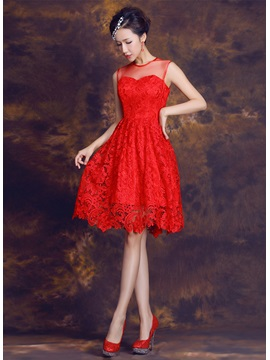 Delicate Jewel Neck Lace A-Line Knee-Length Homecoming Dress