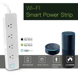 SWB1 Wifi Voice Control Socket Support Alxea Home for Smart Home