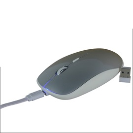 C6 2.4G Wireless Mouse Support Charging