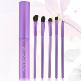 5 Pcs Makeup Brush for Eyes with Aluminum container