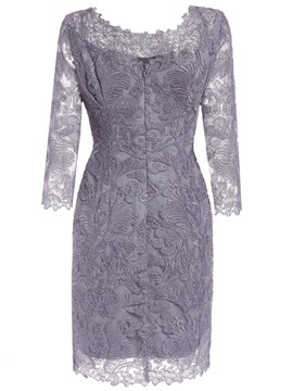 Classy Scoop Neck 3/4 Length Sleeves Lace Party Dress