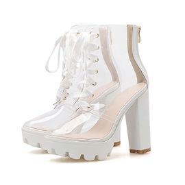Round Toe Chunky Heel Back Zip See Through Boots