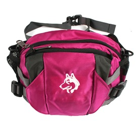 Casual Graphic Nylon Zipper Waist Pack