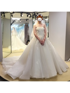 Captivating Strapless Appliques Ball Gown Lace-Up Wedding Dress