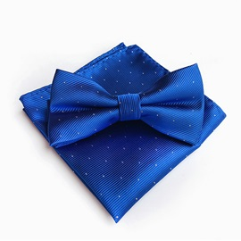 Polka Dots Design Formal Men's Necktie Set