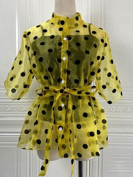 Plus Size Polka Dots See-Through Stand Collar Short Sleeve Standard Women's Blouse