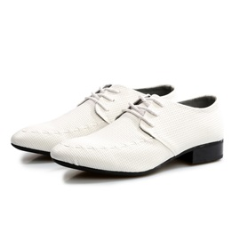 Solid Color Pointed Toe Lace-Up Men's Shoes