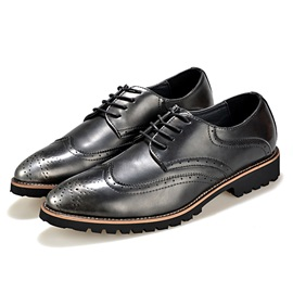 Brush-Off Pointed Toe Lace-Up Brogue Shoes