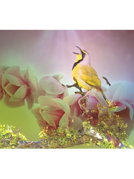 Yellow Bird with Flowers Printed 3D 4-Piece Bedding Sets/Duvet Covers