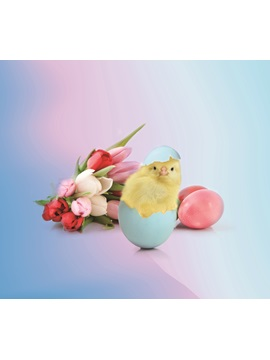 Vivilinen 3D Easter Chicken Egg with Tulip Printed 4-Piece Blue Bedding Sets/Duvet Covers