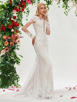 Sheer Neck Mermaid Lace Wedding Dress with Long Sleeve