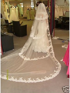 Graceful Cathedral Length White Lace Wedding Bride Veil