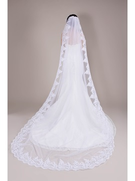 Cathedral Length Appliques Wedding Veil