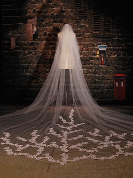 Appliques Lace Tiered Cathedral Wedding Veil
