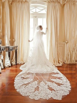Stunning Appliques Edge Bridal Cathedral Veil